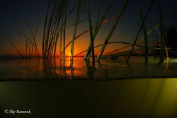 Over/Underwater sunset from Uluabat Lake G&#246;lyaz/Bursa/Tu... by Alp Baranok 